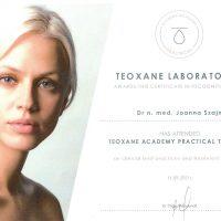Teoxane Academy Practical