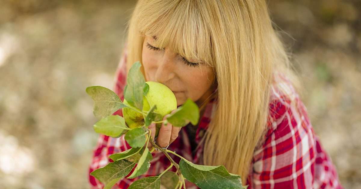Kobieta napawająca się zapachem dojrzałego jabłka (w sadzie)